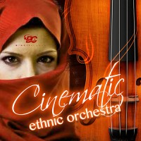 Cinematic Ethnic Orchestra
