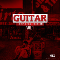 Guitar Leak Loop Edition Vol 1
