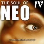 The Soul of Neo 4