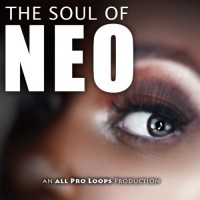 The Soul of Neo