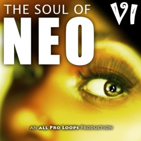 The Soul of Neo 6